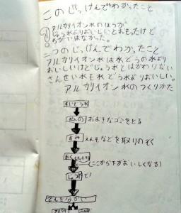 アルカリイオン水自由研究7
